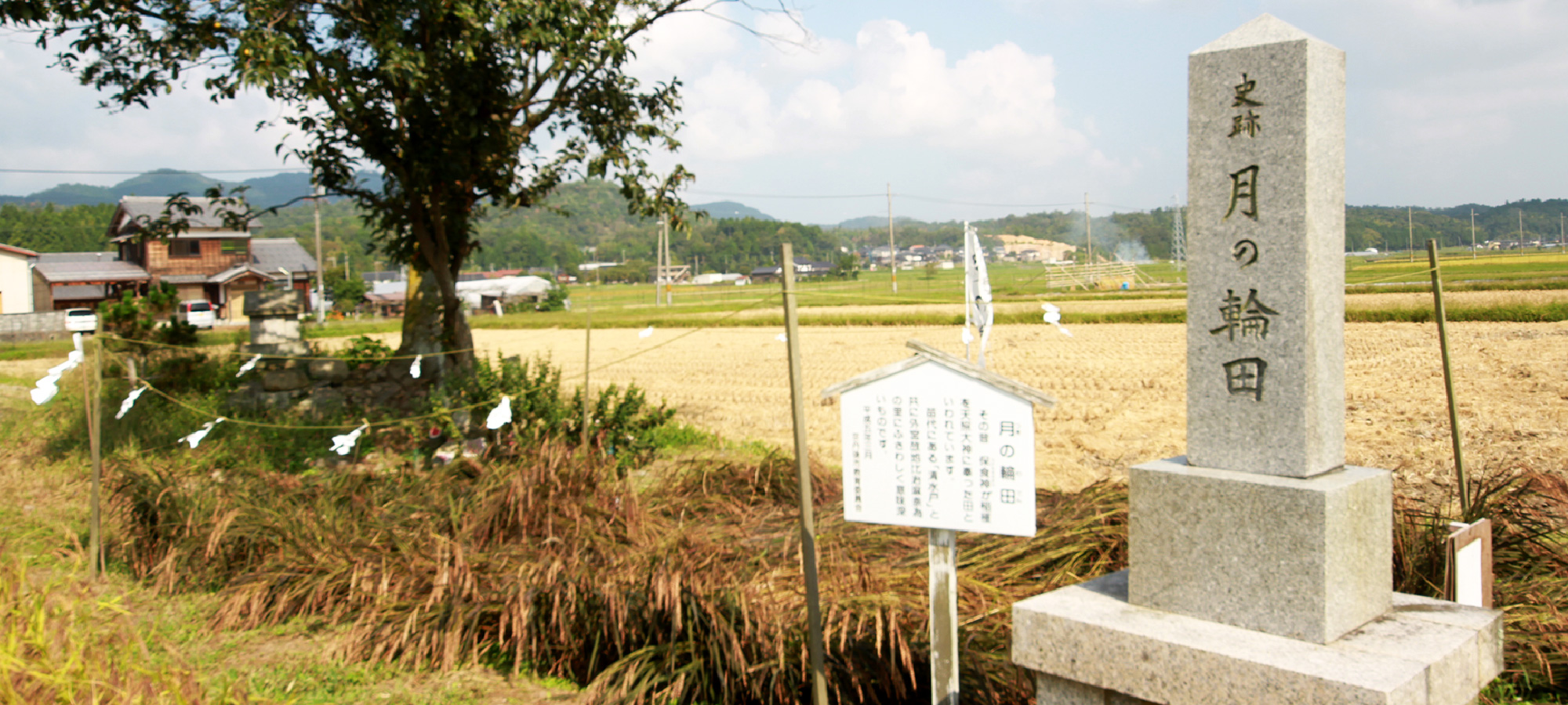 Birthplace of Japanese rice cultivation